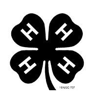 logo_4h2x